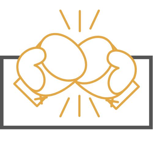 Experto Boxeo