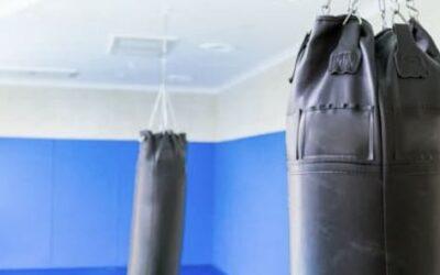 Sacos de boxeo RDX
